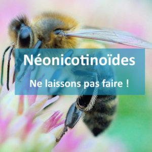 Néonicotinoïdes : j