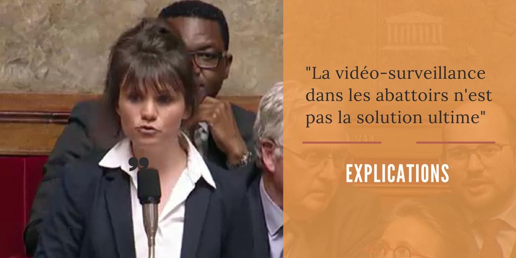 Vidéo-surveillance dans les abattoirs : Ce n'est pas la solution ultime