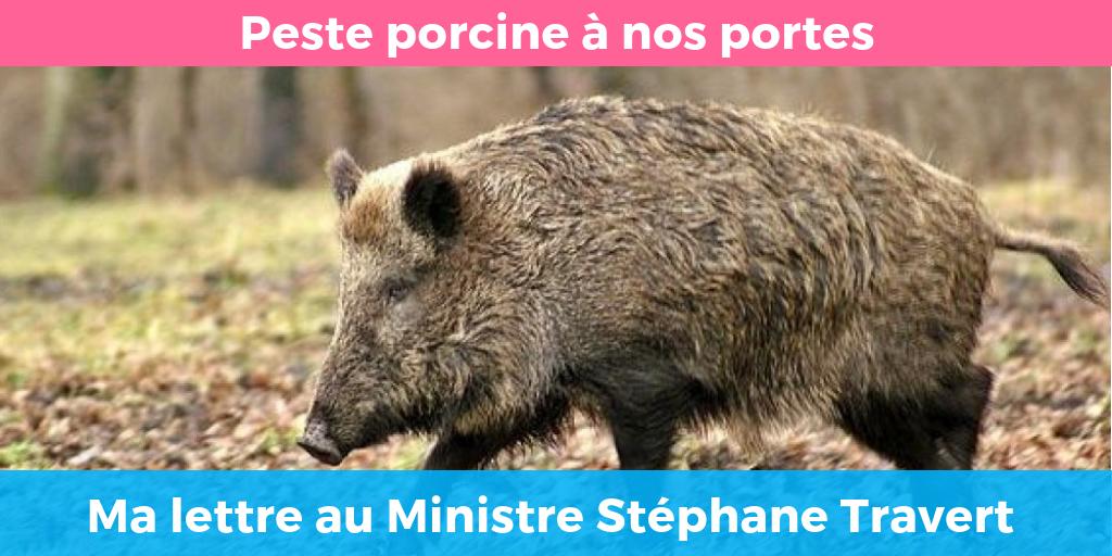 Peste Porcine - ma lettre au ministre