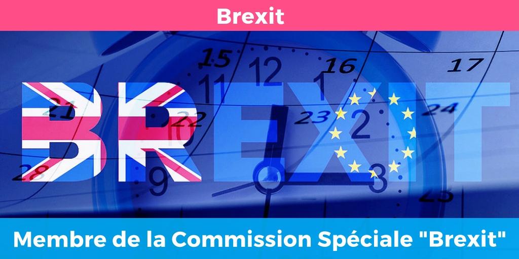 Membre de la commission spéciale sur le Brexit