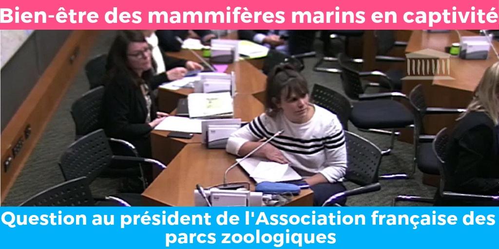 Question à Rodolphe DELORD Président de l'Association française des parcs zoologiques à propos du bien-être des mammifères marins en captivité