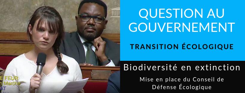 Vidéo – Question au Gouvernement sur la création du Conseil de Défense Ecologique
