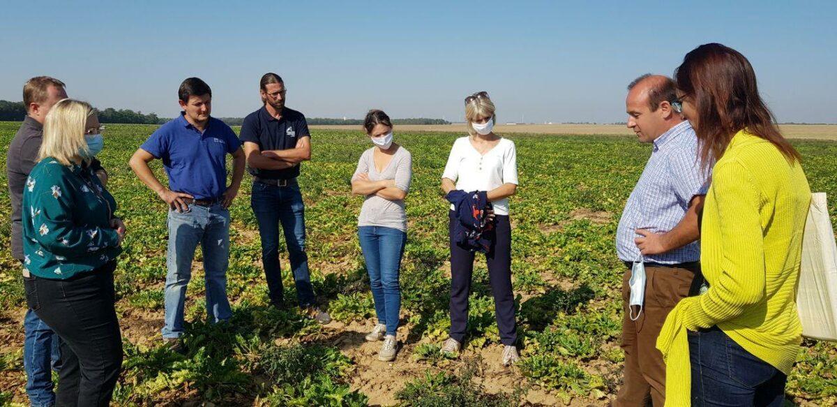 Rencontre avec des producteurs de betteraves au sujet des néonicotinoïdes